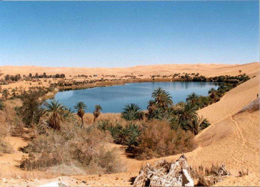 Arabian Peninsula Oasis | www.pixshark.com - Images ... Oasis Geography